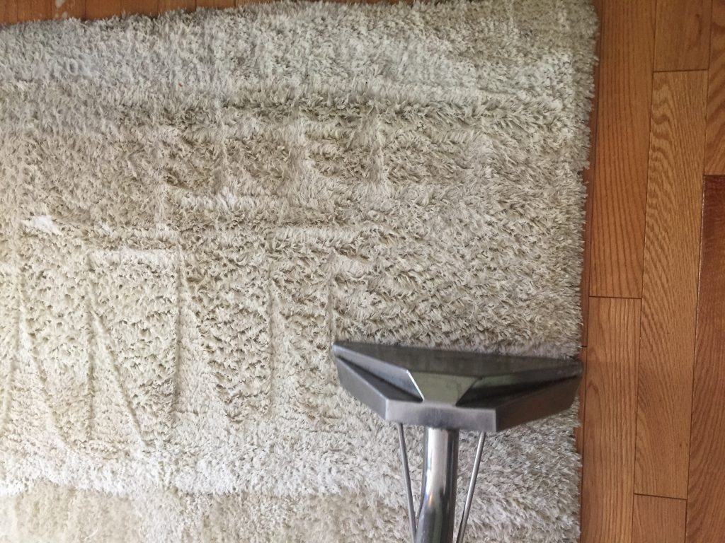 How To Pick The Best Carpet Cleaning Company Good Lookin