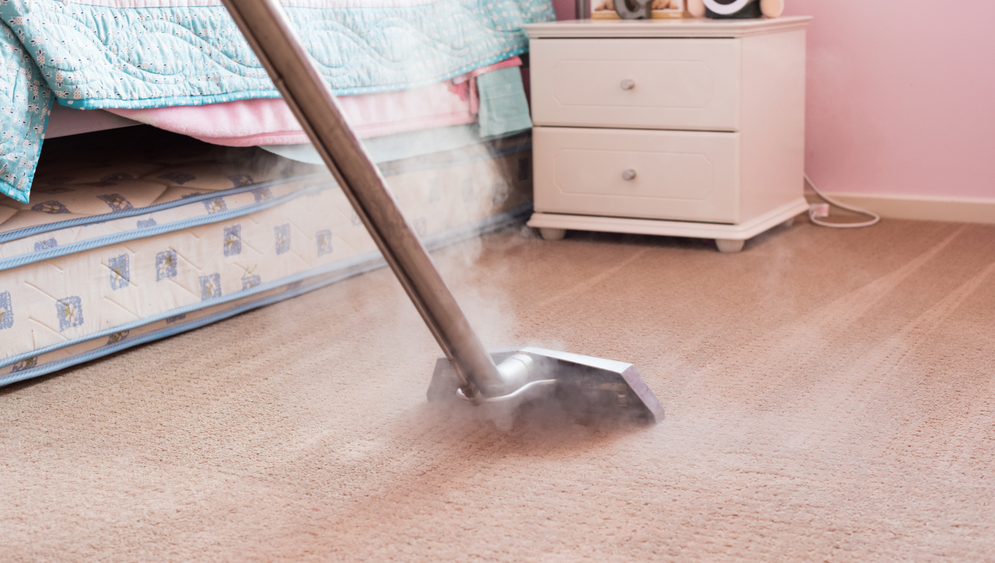 Steam Carpet Cleaning Ottawa